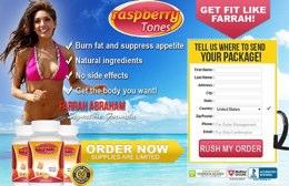 Raspberry Tones website
