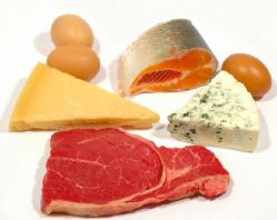 Foods that are high in Protein