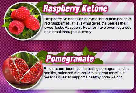 Pure Berry Max Ingredients