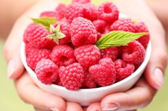 Raspberry ketones what do they do for weight loss