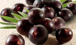 Acai berry is a superfruit