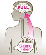 how does Skinny Fiber work