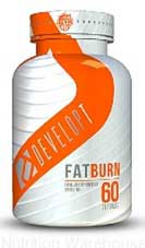 Fat Burn Review